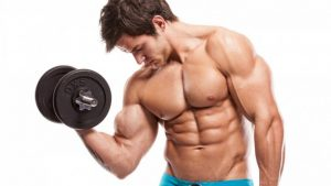 Muscle building powder